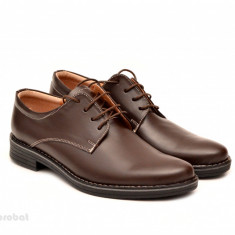 Pantofi barbati piele naturala maro casual-eleganti cu siret cod P69