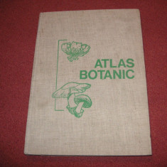 ATLAS Botanic - 1973 (format mare)