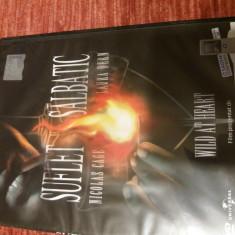 DVD film - Suflet salbatic, Romana