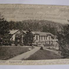 Carte postala Anina (jud. Caras-Severin, Banat) circulata in anul 1903 - Carte Postala Banat pana la 1904, Printata