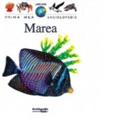 Marea ( Colecția prima mea enciclopedie Larousse )