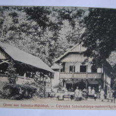 Carte postala Sasca Montana (Caras-Severin, Banat) necirculata anii 1910 - Carte Postala Banat 1904-1918, Printata, Satca Montana