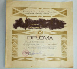 Diploma M.A.N. - R.S.R. -U.M. Cluj Napoca - Aruncarea Grenadei
