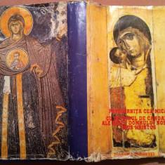 Pavecernita Cea Mica Cu Octoihul De Canoane Ale Maicii Domnului Nostru Hristos - Carti de cult