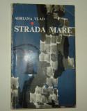 Strada Mare - Adriana Vlad/Annie Bentoiu- Orasul mic te fura-ncet...(Macedonski), Vlad Roman