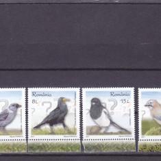 PASARI INTELIGENTE, 2017, MNH, ROMANIA. - Timbre Romania, Fauna, Nestampilat