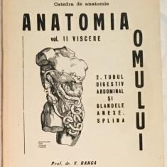 Anatomia omului vol II Viscere, 2 Tubul digestiv abdominal...Splina
