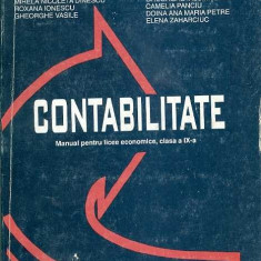 Contabilitate - Mihai Ristea, Mirela Nicoleta Dinescu