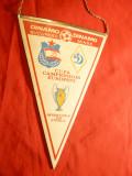 Fanion la Meciul de Fotbal Dinamo-Bucuresti- Dinamo Minsk-1984 sferturi Cupa