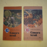 CAMARA IERNII ^ NATALIA TAUTU = 2 VOLUME