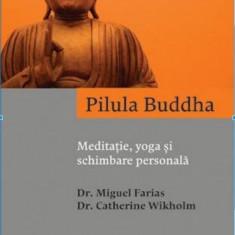 Pilula Buddha. Meditatie, yoga si schimbare personala - de Miguel Farias