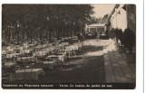 CPI B 10228 CARTE POSTALA - VARNA. GRADINA DE VARA, Necirculata, Fotografie