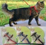 Set lesa + ham Trixie pentru pisici si caini de talie mica
