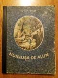 Nuielusa de alun - Calin Gruia / C3P, Alta editura, Calin Gruia