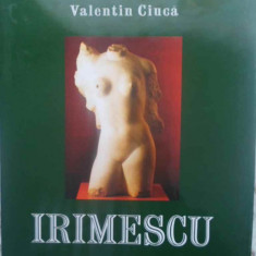 Irimescu - Valentin Ciuca, 414744 - Album Arta