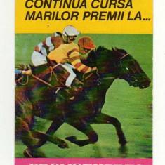 CALENDAR DE BUZUNAR  PRONOEXPRES LOTO PRONO 1981