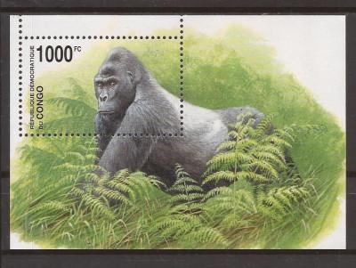 CONGO 2002 FAUNA(gorile) Mi. 117(dantelata) foto