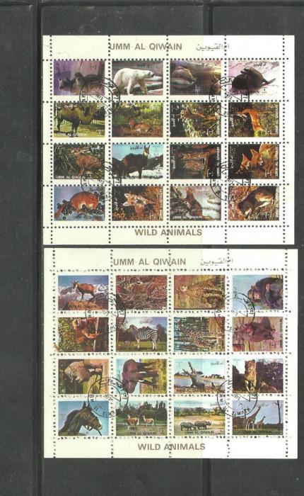 UMM AL QIWAIN 1973 - ANIMALE SALBATICE, colite stampilate, T75 foto mare