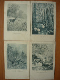 Animale  - lot 11 carti postale vechi ( G. Heuer & Kirmse - Germania ), Necirculata, Printata, Europa