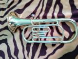 Vand euphonium amati