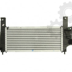 Intercooleer NISSAN NAVARA, PATHFINDER 2.5D 03.05- - Intercooler turbo Thermotec