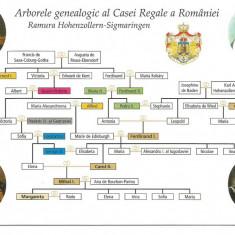 (A)carte postala(ilustrata)-CASA REGALA A ROMANIEI -Arborele genealogic