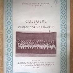 Culegere de cantece corale banatene {1955-1956} - Carte Arta muzicala