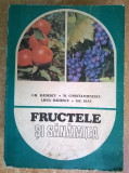 Gh. Badescu, s.a. - Fructele si sanatatea