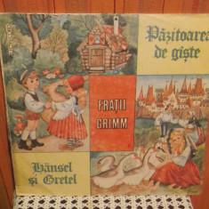 - Y- FRATII GRIMM - PAZITOAREA DE GASTE / HASENEL SI GRETEL - POVESTI - Muzica pentru copii, VINIL