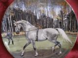 FARFURIE DECORATIVA PORTELAN ENGLEZESC SPODE DECOR CAI