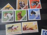 1965/2018  LP 620 CAINI DE VANATOARE, Nestampilat