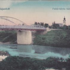 ARAD CHISINEU CRIS,KISJENO,CIRCULATA 1918,ROMANIA., Fotografie