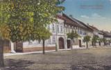 ORASTIE,CENTRU,CIRCULATA 1910,ROMANIA., Fotografie