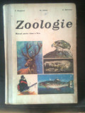 Zoologie - Manual clasa a VI-a - Bogoescu; Dabija; Stoicescu (1976)