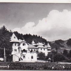 bnk cp Vile in Sangeorz Bai - Vedere - circulata