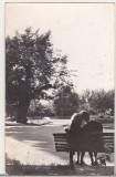 Bnk cp Iasi - Teiul lui Eminescu din gradina Copou - circulata, Printata