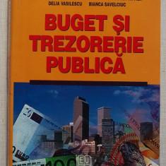 Buget Si Trezorerie Publica - Colectiv