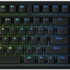 Tastatura Gaming Mecanica Tesoro Gram Spectrum G11SFL (Negru) - Tastatura PC