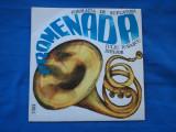 MUZICA DE FANFARA- PROMENADA, VINIL, electrecord