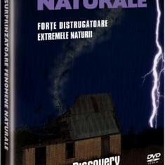 Surprinzatoare fenomene naturale: forte distrugatoare/Extremele naturii, DVD, Romana, discovery channel