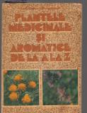 (C8060) PLANTELE MEDICINALE SI AROMATICE DE LA A LA Z DE OVIDIU BOJOR