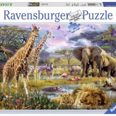 Puzzle Ravensburger Buntes Africa - 1500 piese