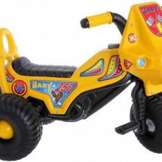Tricicleta cu pedale Hary - Tricicleta copii, Multicolor