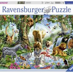 Puzzle Ravensburger Aventuri - 1000 piese