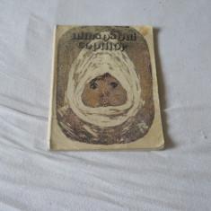 Almanahul copiilor 1979