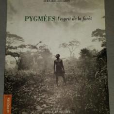 Pygmees, l'esprit de la foret / Bernard Descamps