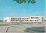 bnk cp Amara - Tabara de pionieri si scolari - circulata - marca fixa
