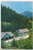 Bnk cp Rodna - Valea Vinului - Vile - circulata, Printata