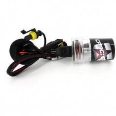 Bec Xenon H11-6000K, Carguard, ,12V, 35W