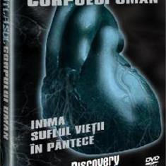 Atlasul corpului uman -Inima, Suflul vietii,In pantece, DVD, Romana, discovery channel